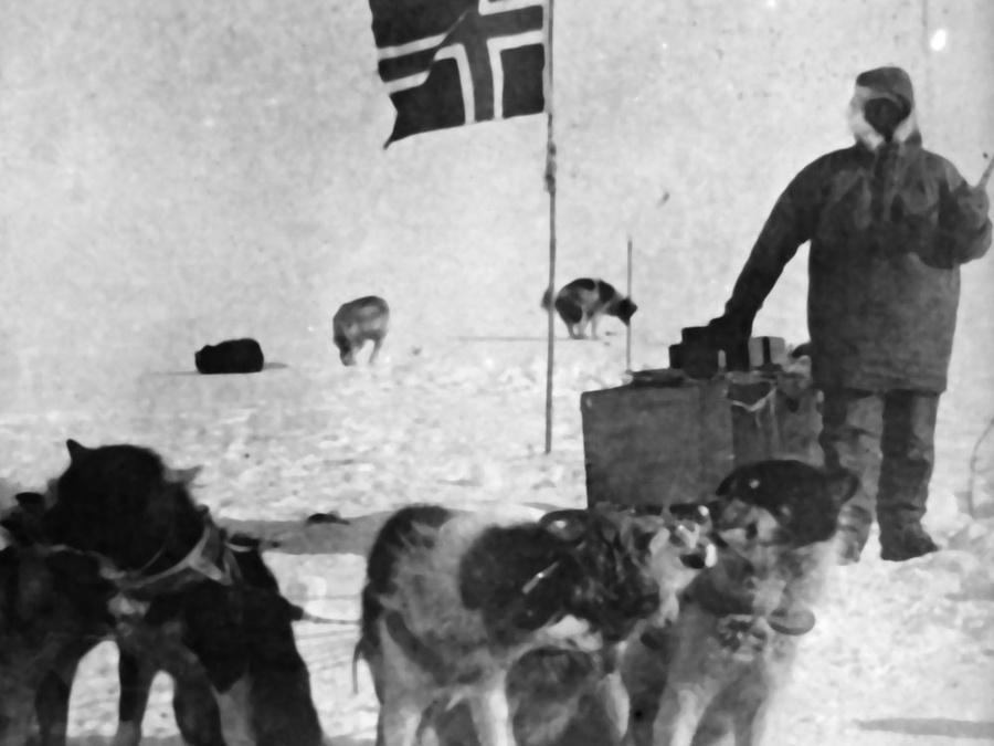 Olav og hundane